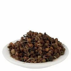 Makoy Seeds
