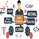 Web Development Services in  Miami