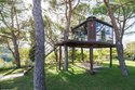 Prefabricated Tree House