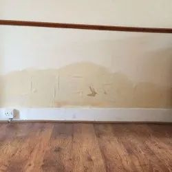 Rising Dampness Treatment Services