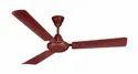 75w Paradise High Speed Copper Winding Ceiling Fan, Fan Speed: 390 Rpm, Power: 75 Watts