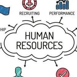 Depends On Requrirement Real Consultancy Middle Management Hiring Service, Gujarat