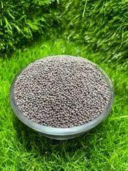 Black Musterd Seeds