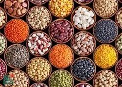 Organic Pulses (Only Export Quality)