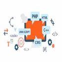 Web Development Company In Turkey