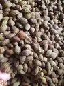 Niranjan Phal/ Malwa Nut / Sterculiae Lychnophora