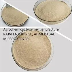 Agro Chemical Enzymes