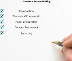 Assistance And Guidance Personal Literature Review Writing Service