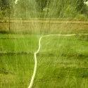 Rain Pipe