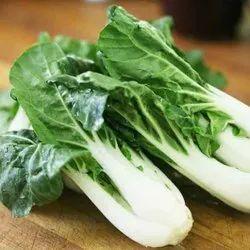A Grade Green Fresh Bok Choy, 10 Kg