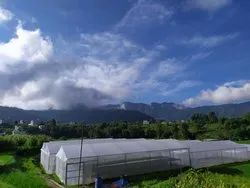 UV Protection Greenhouse Covering Films