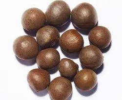 Dried Green Tea Seed, Packaging Type: Jute Bag, 50 Kg