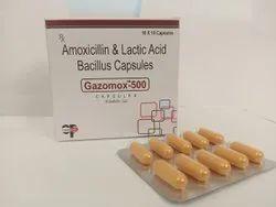 Amoxycillin 500 Lactic Acid Bacillus Capsules