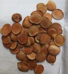 Natural Kachnar Seeds