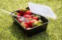 Rectangular Plastic Food Containers
