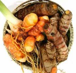 Luckadong Turmeric seed