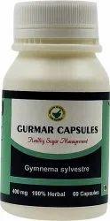 Gurmar Extract Capsules