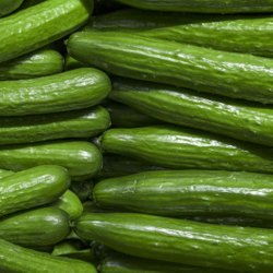 A Grade Maharashtra Fresh Green Cucumber, Packaging Size: 10 Kg