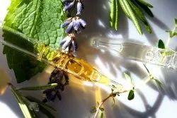 MPA Leaves,Seeds Hair Care Essential Oils, For Personal