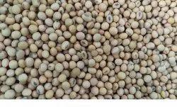 White Soya Bean, 50 kg