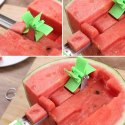 Watermelon Cutter