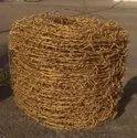 Golden Barbed Wires