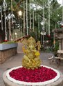 FRP 12 Ganesh on Lotus