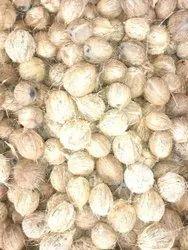 A Grade Fresh Coconut, Packaging Size: 25 kg, Coconut Size: Medium