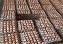 Fertile Hatching Egg
