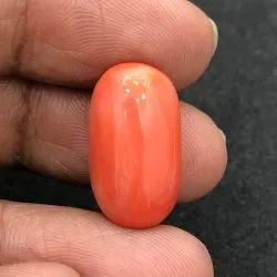 Japanese Red Coral
