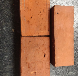 Clay Elevation Wire Cut Wall Brick