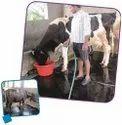 Cow Mat ( Stable Mat)