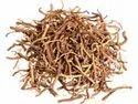 Valerian Root / Valeriana Officinalis