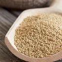 Rajgeera Seeds