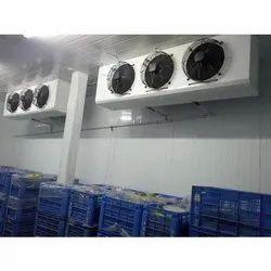 Fruit & Vegetable Cold Storage