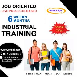 Summer Industrial Training Service