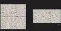 Kajaria Floor Tiles 600x1200