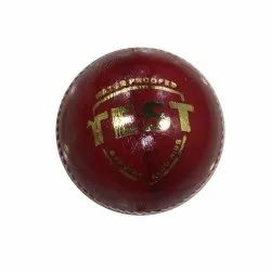 Test Leather Cricket Ball