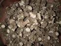 Pipplamool Ganth / Dry Root