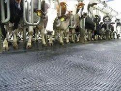 Cow Mat Distributor In Chennai