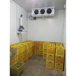 Fruit Cold Room