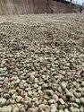 Agro International Organic African Origin Raw Cashew Nuts, Packaging Type: Jute Bags, Packaging Size: 80 Kg
