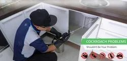 Food Industry Cockroaches Control Services
