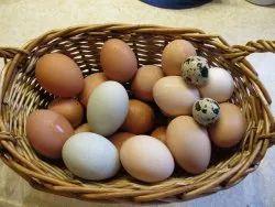 Aseel Brown Vitamin Enhanced Egg, For Restaurant, Packaging Type: Tray