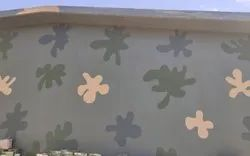 Camouflage Paint