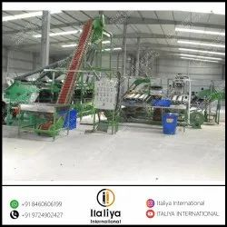 Automatic Cashew  Processing System