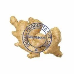 A Grade Ginger Root, Packaging Size: 50 Kgs
