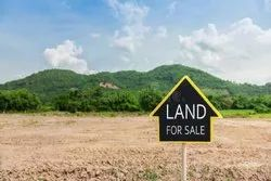 Plot Land Sale And Purchase