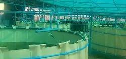 Pvc Aquaculture Tanks