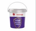 Star Weather Shield (exterior Wall Paint)